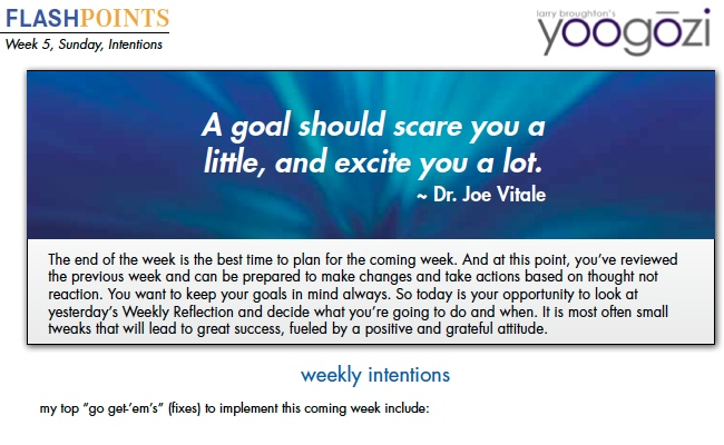 A goal should scare you a little, and excite you a lot. Dr. Joe Vitale