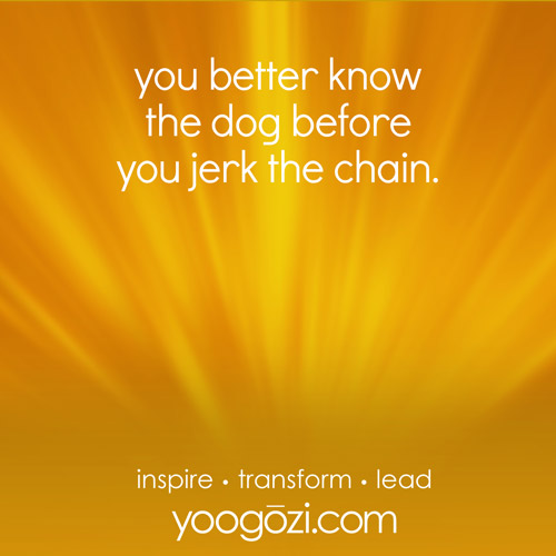 you better know the dog before you jerk the chain.