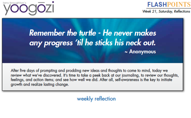 Remember the turtle - He never makes any progress 'til he sticks his neck out. ~ Anonymous