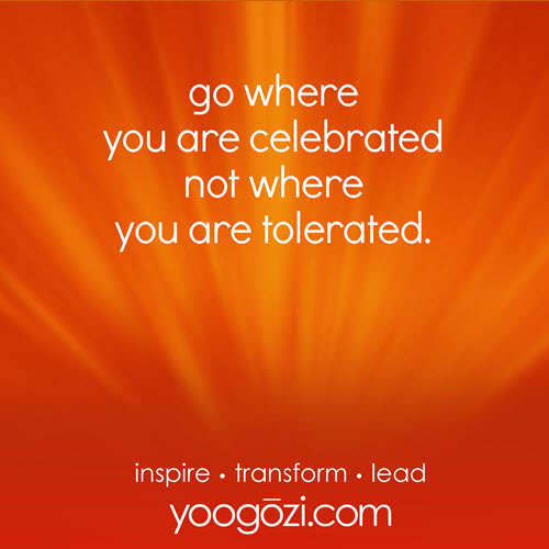 go where you are celebrated, not where you are tolerated.