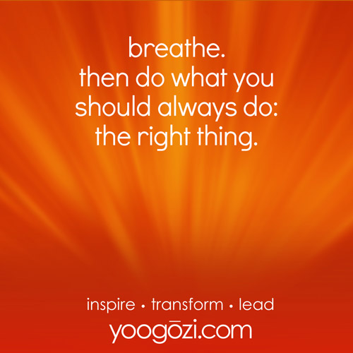 breathe. then do what you should always do: the right thing.